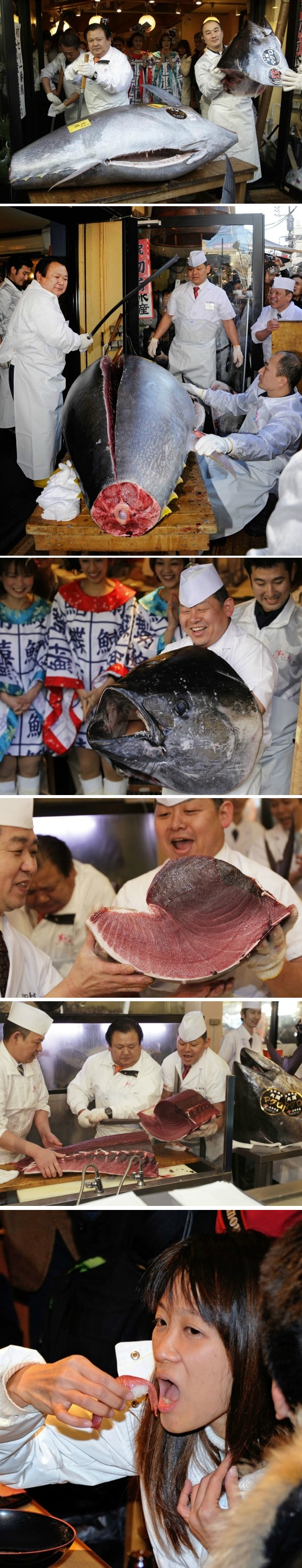 The world's most expensive tuna being sliced open and eaten