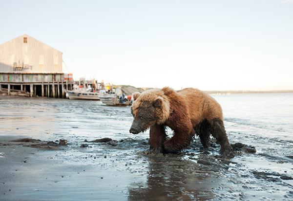 Corey-Arnold-The-Bering-Sea-6