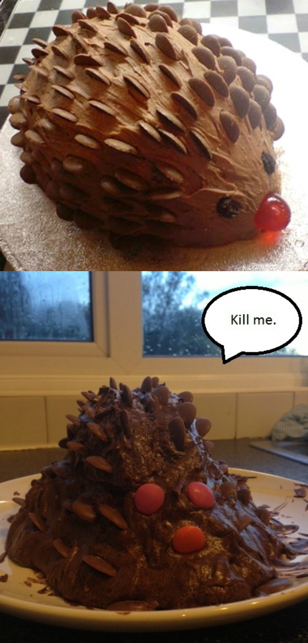 chocolate-hedgehog