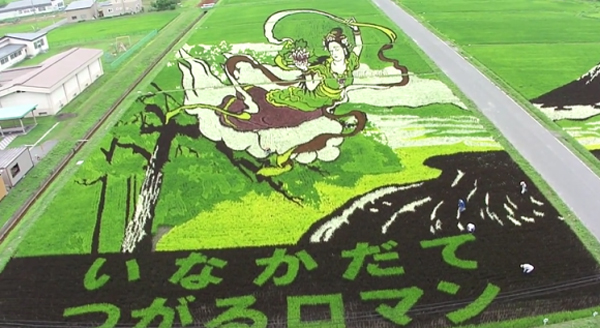 Rice-Paddies-Art-Japan