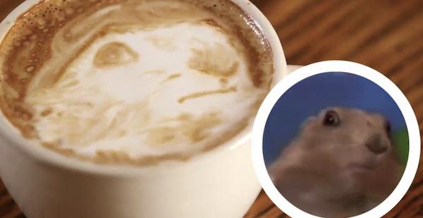 Latte-Meme-Gopher