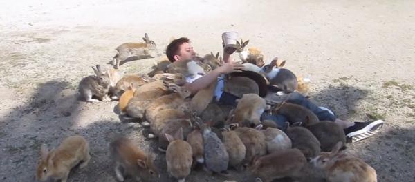 Feeding-Bunnies