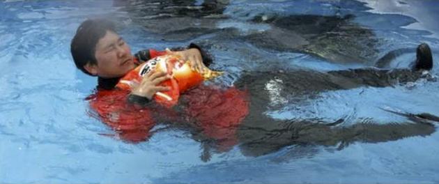 chip-floatie