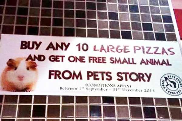 Unfortunately, Pizza Hut ISN'T Giving Away Free Hamsters