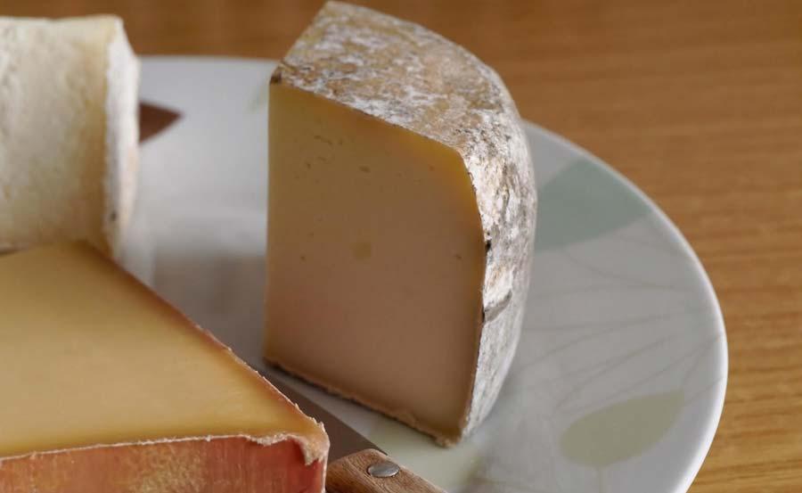 Cheese-Baby-Sitter
