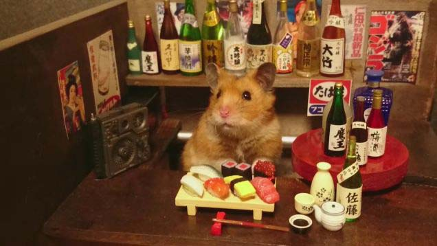 This Is What It'd Look Like if Hamsters Ran Bars and Sushi Restaurants