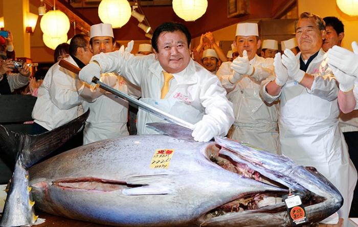 giant-tuna