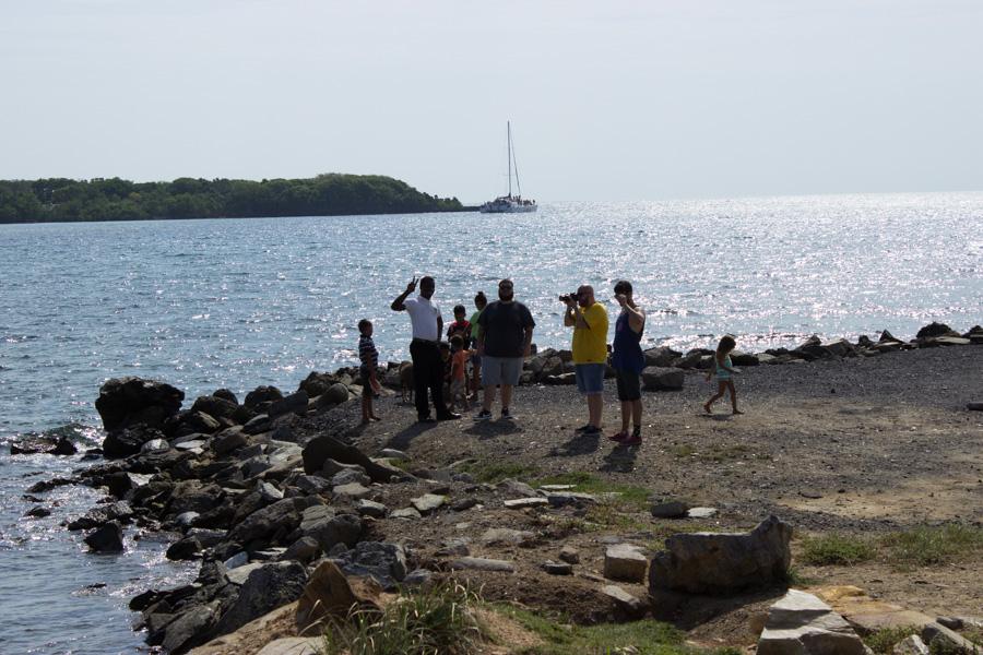 Island-7114