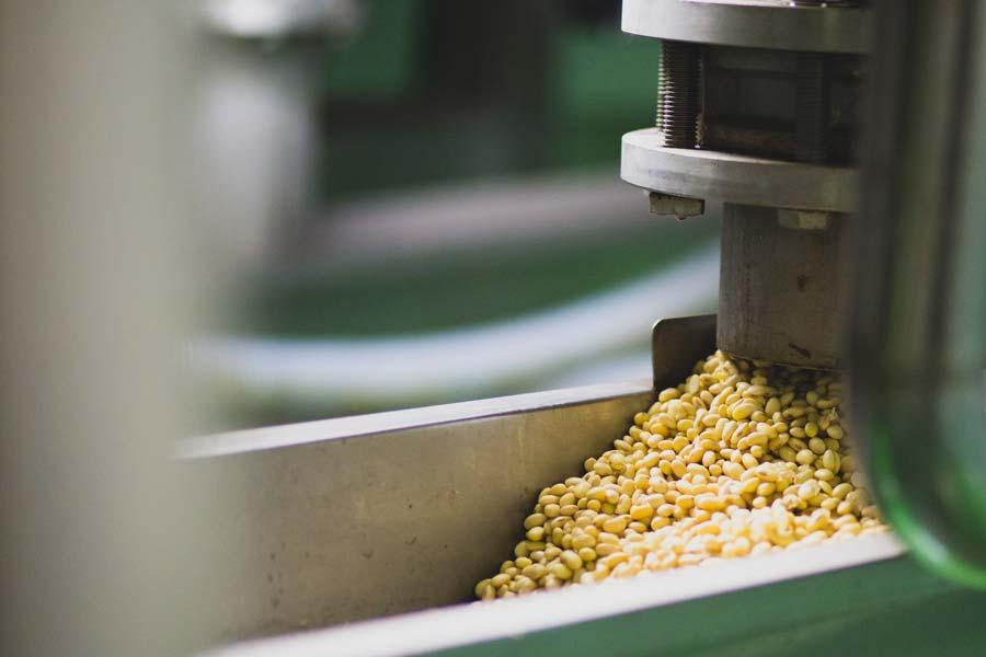 Tofumaster-soybeans