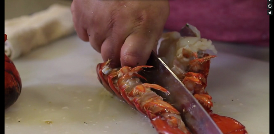Slicing Lobster-53