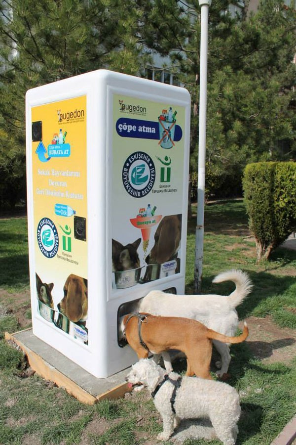 vending-machine-feeds-stray-animals-in-exchange-for-recycled-bottles-00-e1430723076346