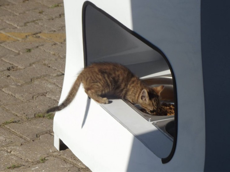 vending-machine-feeds-stray-animals-in-exchange-for-recycled-bottles-6-740x555
