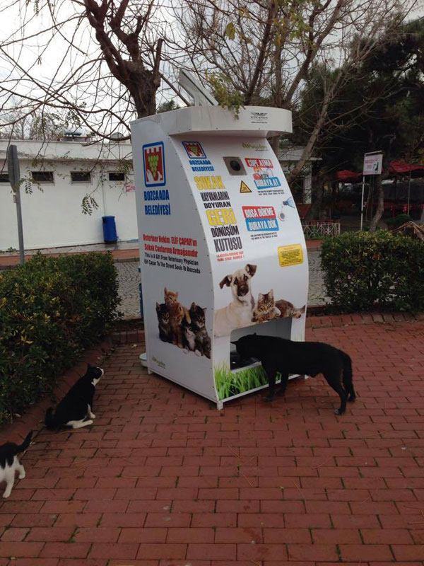vending-machine-feeds-stray-animals-in-exchange-for-recycled-bottles-9