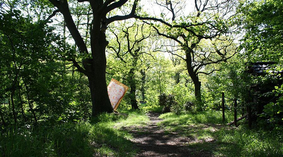 PopTart-Woods