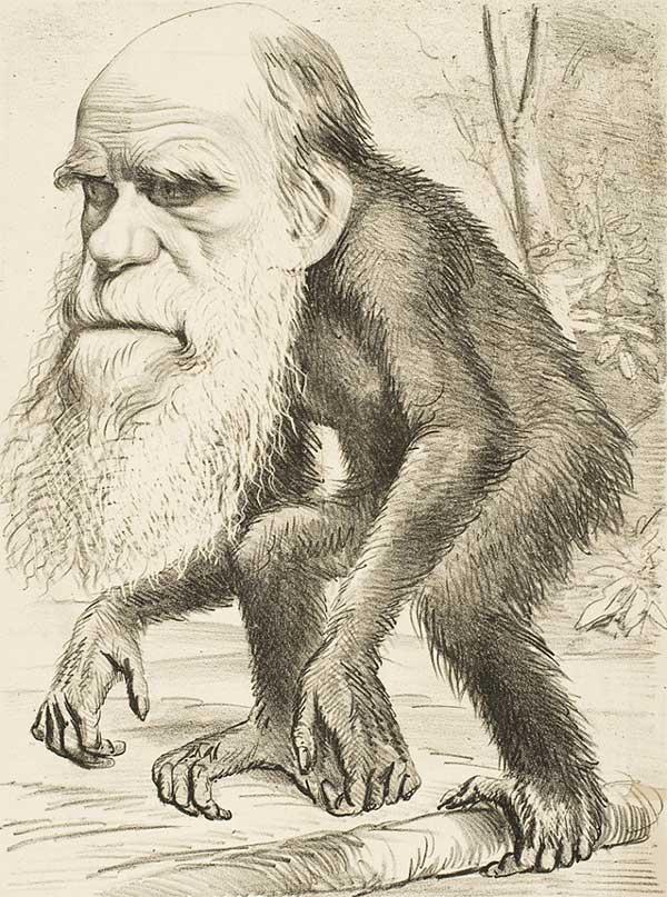darwin2-reduced