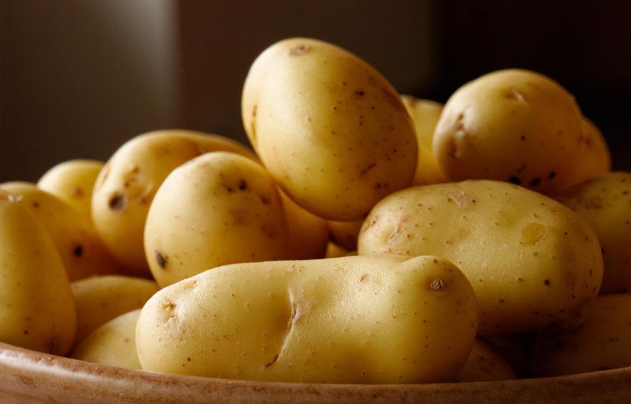 Potato-Stk