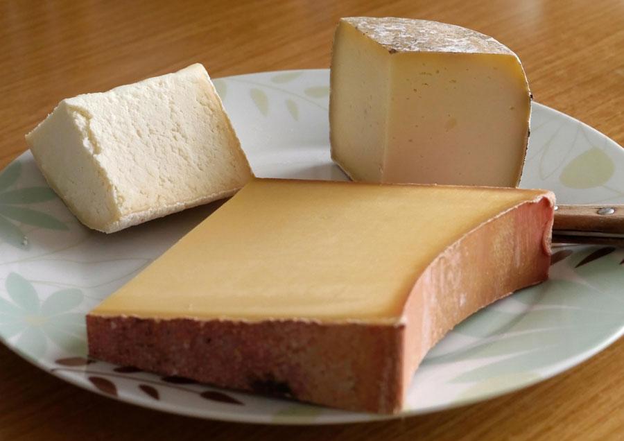 Cheese-Power
