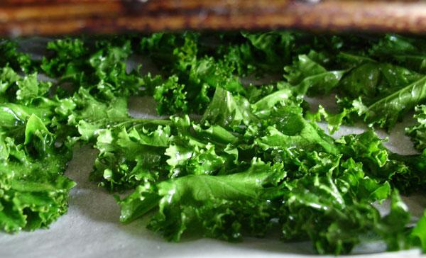 Kale-Stk-02
