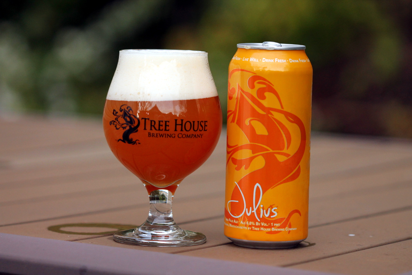 Tree House Julius