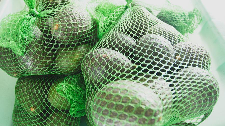 Avocado-Bags-01