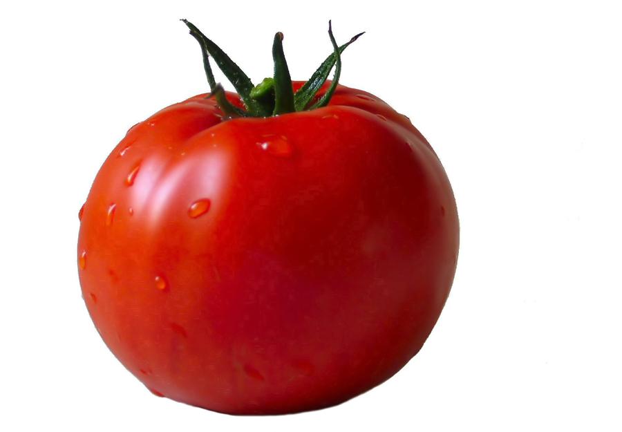 tomato-image-mf