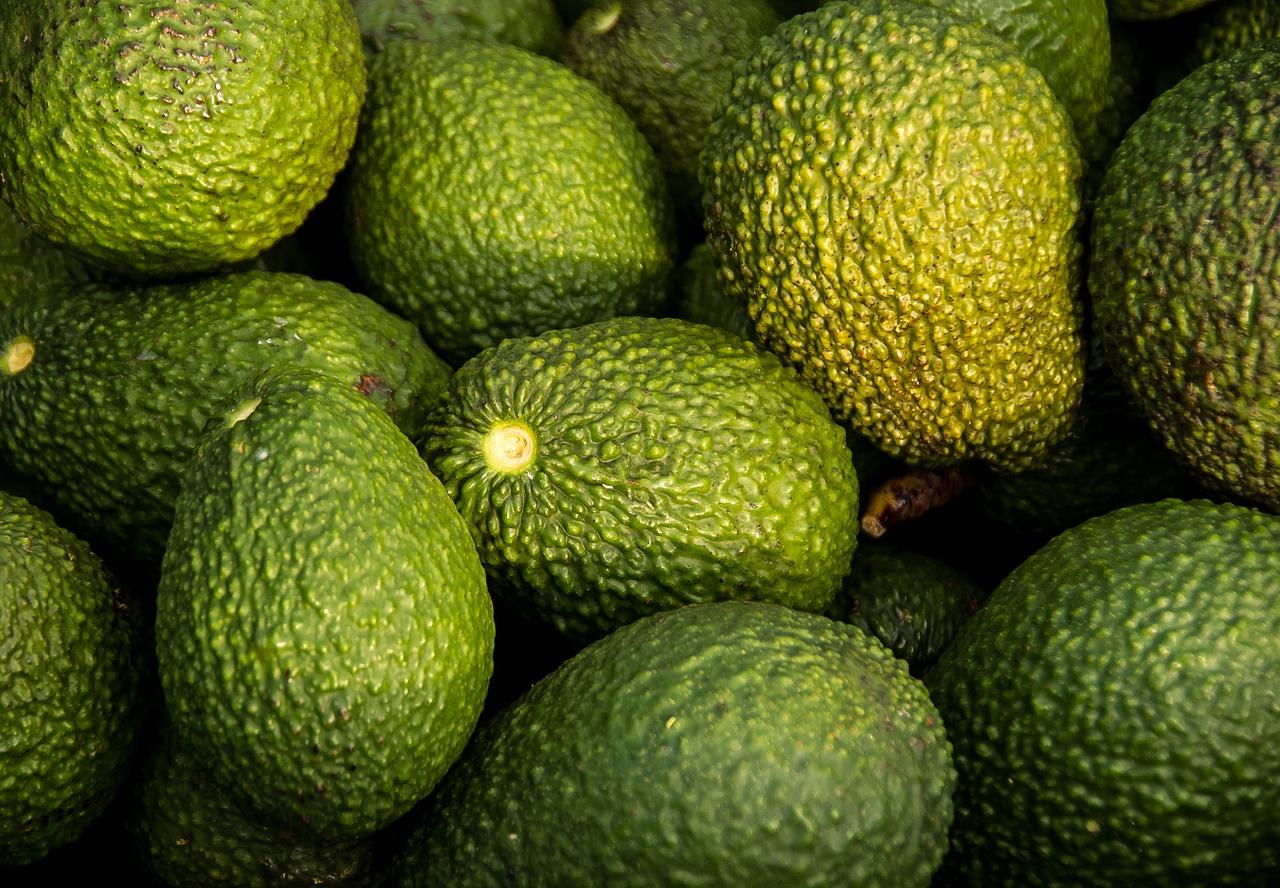 hass-avocado-882635_1280